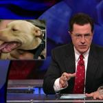 the.colbert.report.10.07.09.Alison Gopnik_20091020015108.jpg