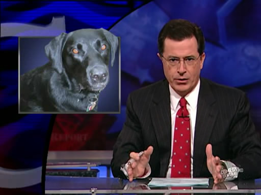 the.colbert.report.10.07.09.Alison Gopnik_20091020015116.jpg