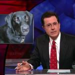 the.colbert.report.10.07.09.Alison Gopnik_20091020015222.jpg