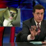 the.colbert.report.12.09.09.Matt Taibbi_20100104163845.jpg