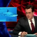 the.colbert.report.03.09.10.Annie Leonard_20100314033334.jpg