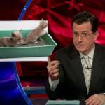 the.colbert.report.03.16.10.Rebecca Skloot_20100327033928.jpg